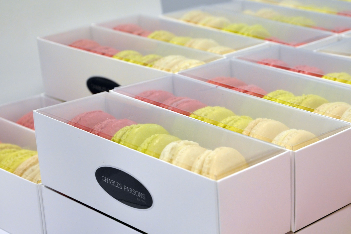 CP Fashion SS16 Colour Matched Macaroons