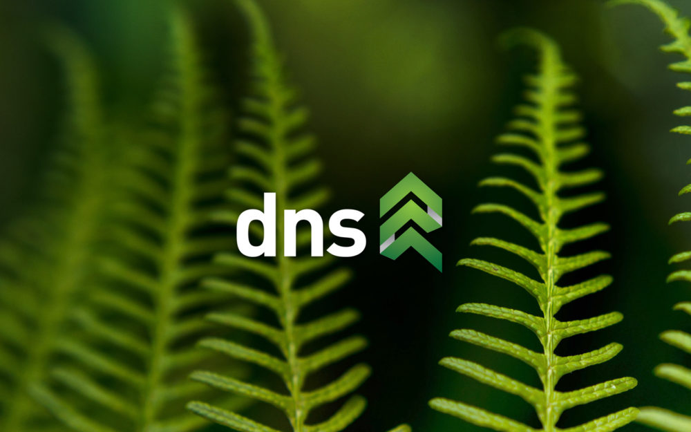 DNS Forest Products Ltd