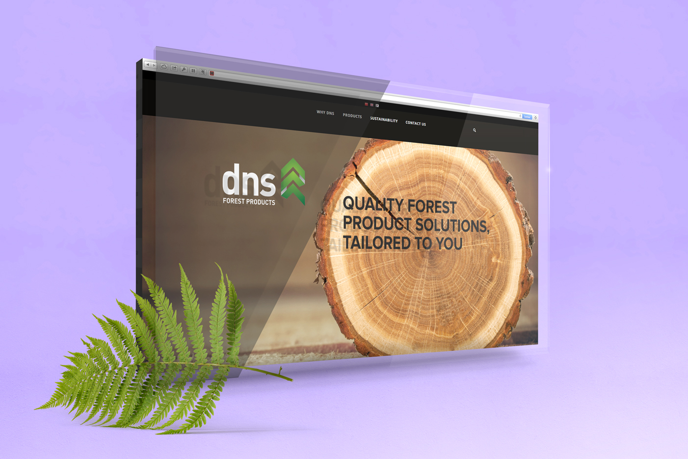 DNS Ltd Website Build UX